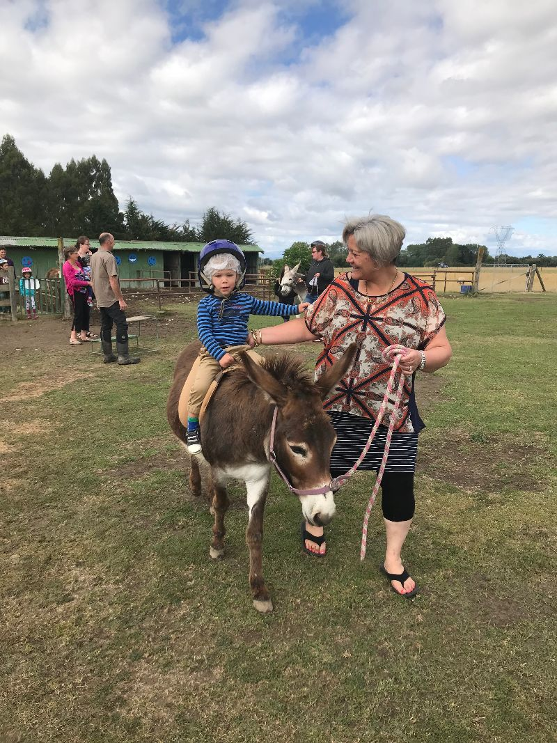 The Farmyard Holiday Park - Donkey Ride
